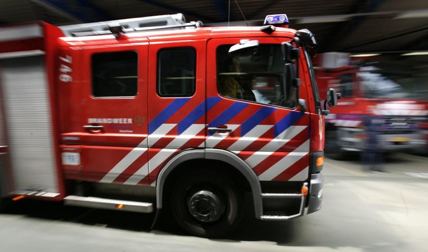 • De Lingewaalse brandweer haalde een koe uit het water.