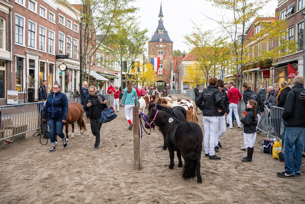748e Viaanse Paardenmarkt Foto: Nico Van Ganzewinkel © Vianen