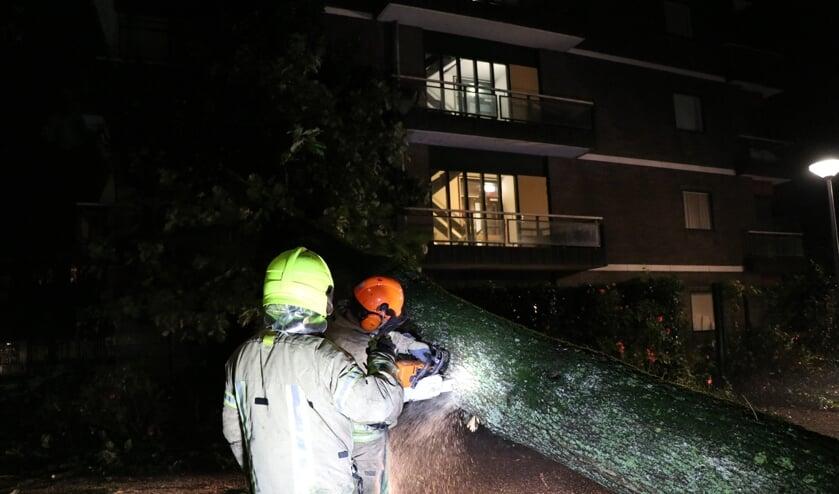 • Brandweerlieden zaagden de omgevallen boom in stukken.
