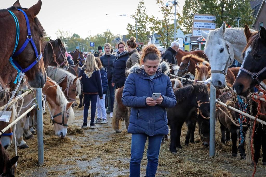 300 jaar Paardenmarkt Foto: Lya Cattel © Bommelerwaard