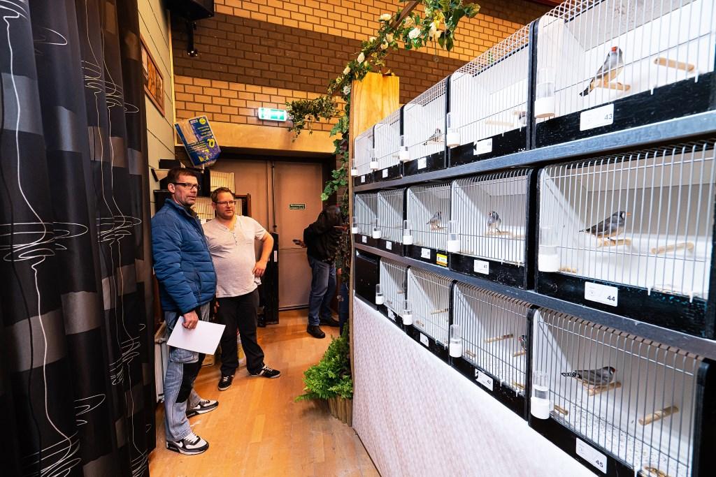 Vogeltentoonstelling in Spijk Foto: Nico Van Ganzewinkel © Leerdam
