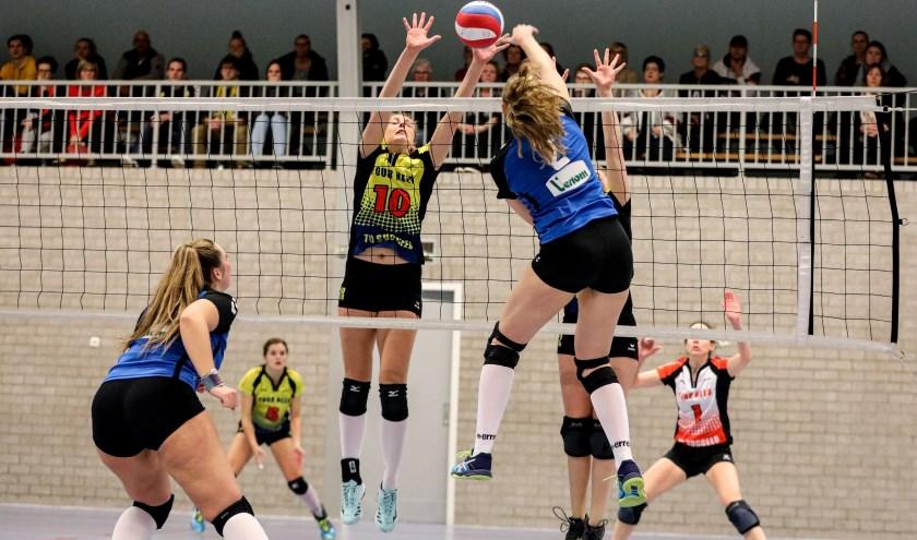 • Volley Meerkerk'95 - Spivo (3-1).