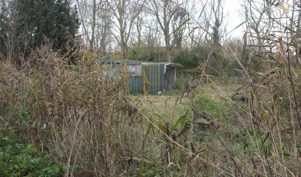 • Op deze plek zijn kleine huizen gepland, maar Natuurwacht Bommelerwaard wil graag dat het groen blijft. Foto: Janneke Boogaard © Bommelerwaard
