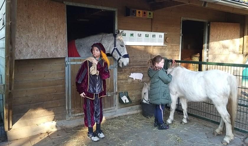 • Het paard was niet alleen, maar had ook een pony meegenomen.