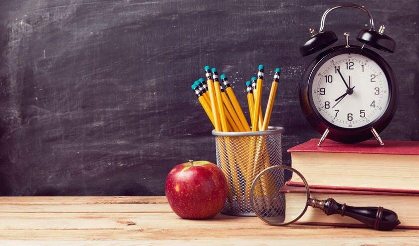 • Schooldirecteuren verwachten dat de brede school zal bijdragen aan de kwaliteit van onderwijs in Ameide.