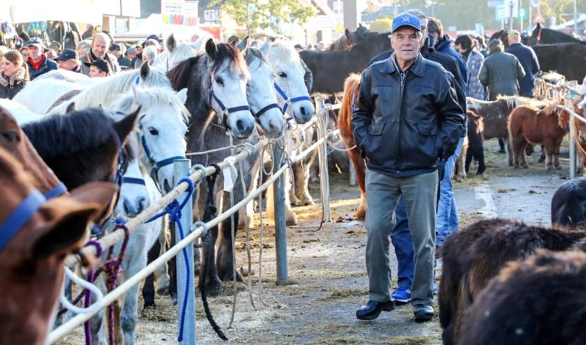 • Paardenmarkt 2017.