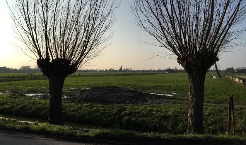 • Blik op polder De Hoeken.