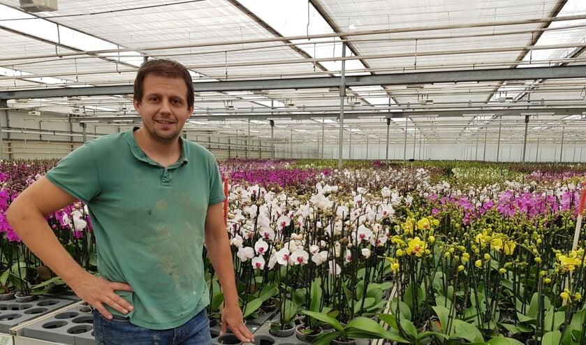 Gerben van Giessen wil uitbreiden met Butterfly Orchids.