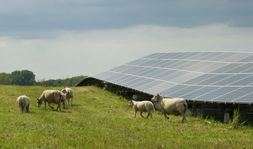• Het zonnepark van Avri in Geldermalsen.