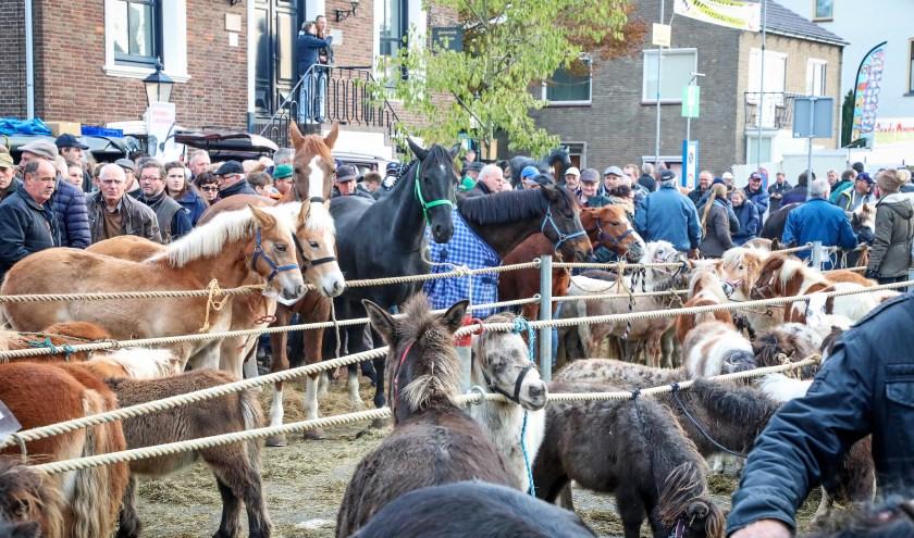 • De Hedelse Paardenmarkt vindt traditiegetrouw plaats op de eerste maandag van november.