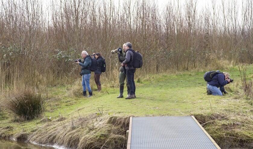 Leden van fotoclub Image Totaal op pad in de Biesbosch.