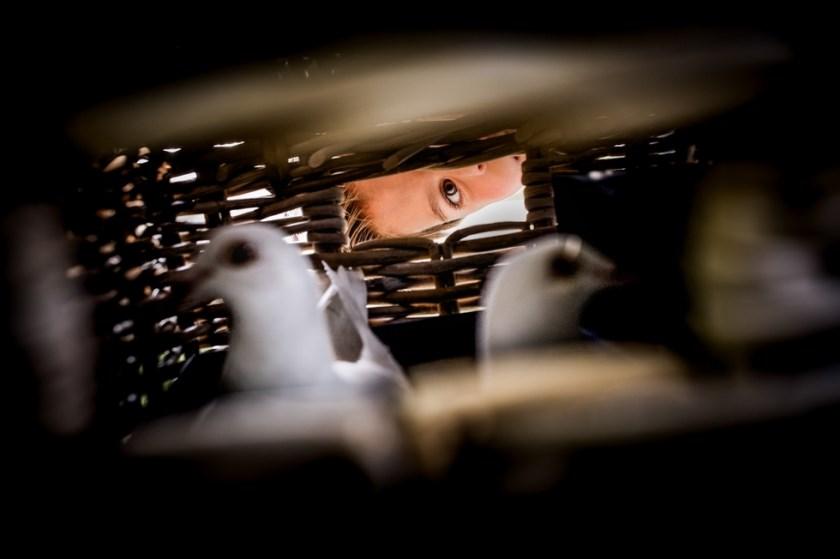 • Deze foto van Janneke Kooiman-Brand uit Alblasserdam is genomineerd in de categorie Bruidskinderen.