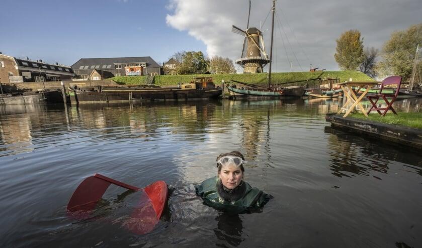 <p>&bull; Duikster Brenda in het water van de Linge, met op de achtergrond de Gorinchemse molen Nooit Gedacht. In de Noordzee dook ze naar plastic.</p>