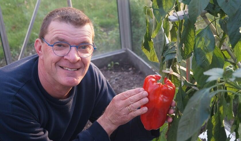 • Hans Korevaar met zijn grote paprika.