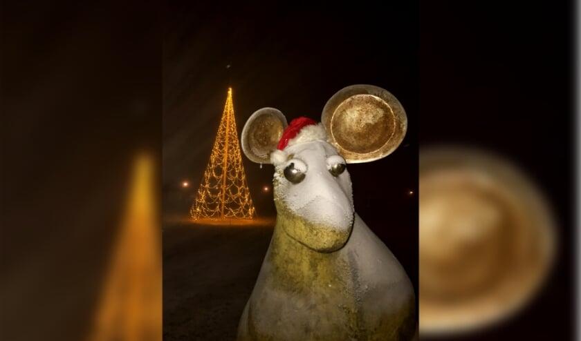 • Het Muizenveld in Leerdam kan, evenals vorig jaar, weer worden verlicht.