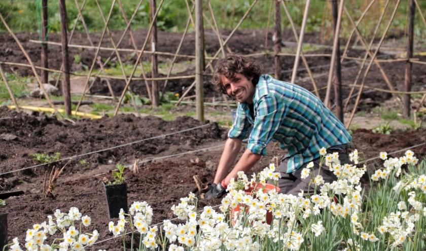 • Beke Romp aan het werk in de tuin.