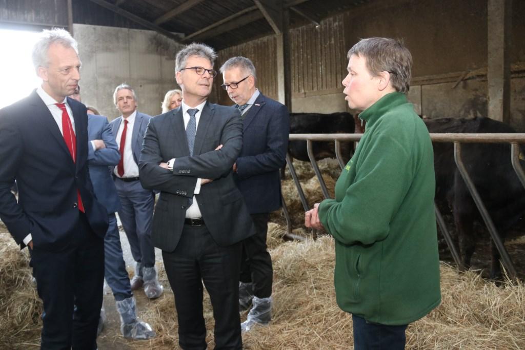 • De delegatie mocht natuurlijk ook nog even de stal zien van De Groene Geer Foto: Dick Aanen © Vianen