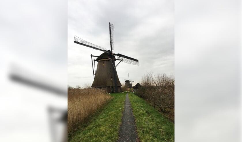 <p>&bull; Het vervoer van toeristen naar Kinderdijk blijft een heikel punt in de regio.</p>