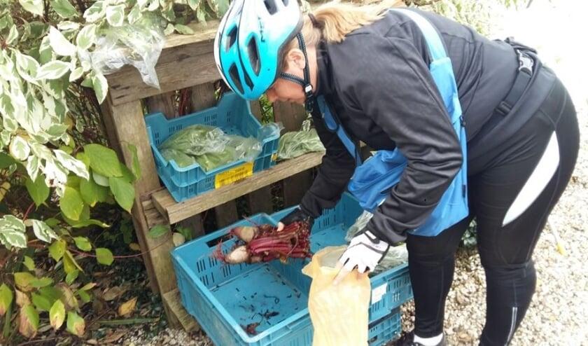 • Stalletje langs de weg waar je zelf groenten kunt halen.