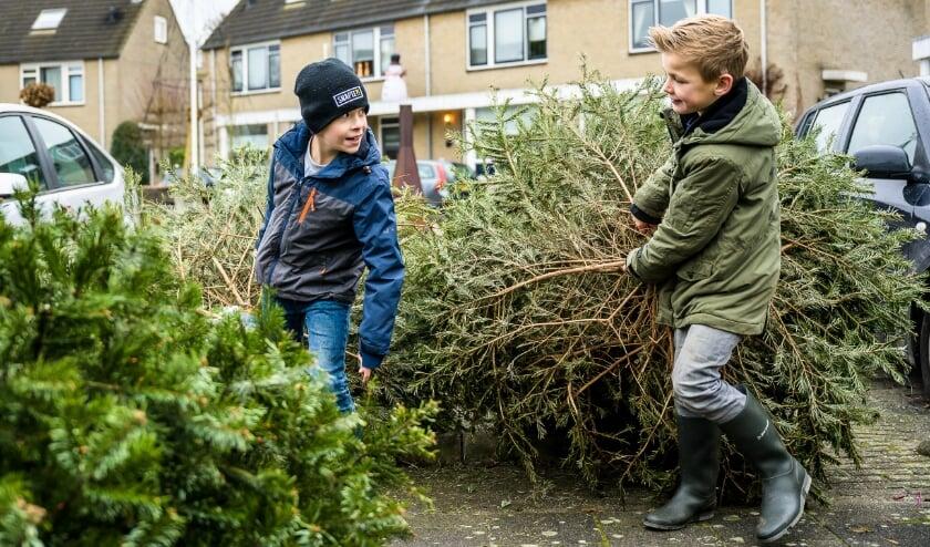 <p>De vrienden Tim van Buuren en Mats van Iterson zamelen samen kerstbomen in. De opbrengst doneren de 10-jarige Leerdammers aan KWF kankerbestrijding.</p>