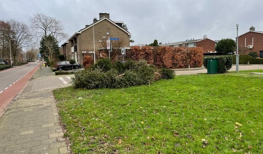 <p>&bull; Bergen afgedankte kerstbomen in de straten in Krimpen aan den IJssel.&nbsp;</p>