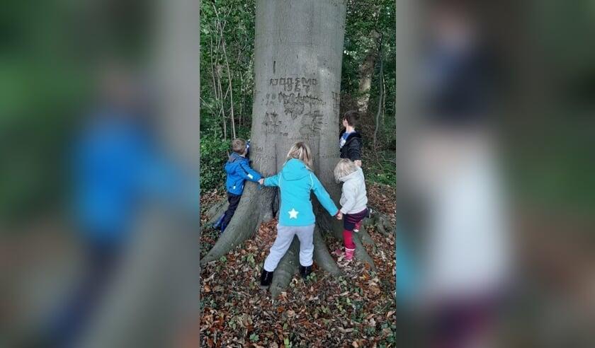 <p>Een leuke herfstactiviteit voor kinderen in het Zoelense bos.</p>