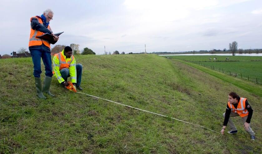 <p>Waterschap Rivierenland werkt op de dijk met aandacht voor de natuur. </p>