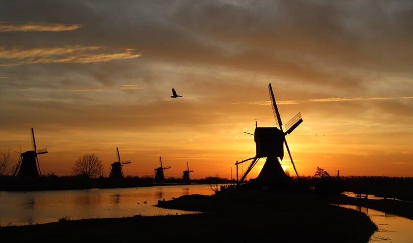 <p>&bull; De molens in Kinderdijk.</p>