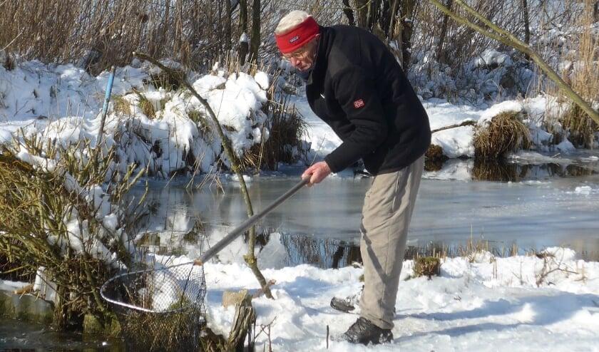 <p>• Hille de Bruin zorgt dat de ijsvogels toch bij de vis kunnen.</p>