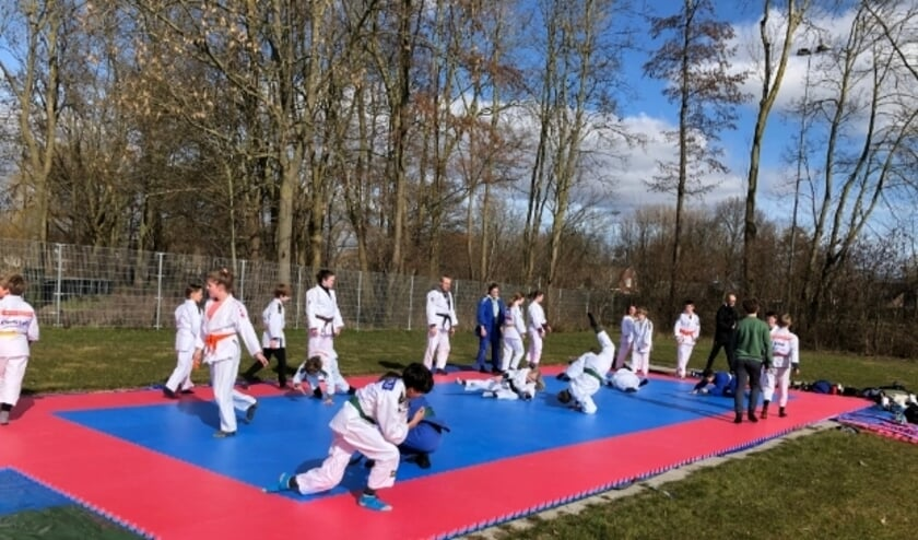 """<p>Hier de groep 10- tot 14-jarigen aan het werk, maar ook oudere judoka&#39;s - tot 27 jaar- konden buiten de mat op. <span class=""""Fotocredit"""" cstyle=""""Fotocredit"""" style=""""color: rgb(0, 0, 0);"""">Foto: Irma Rijkse</span></p>"""