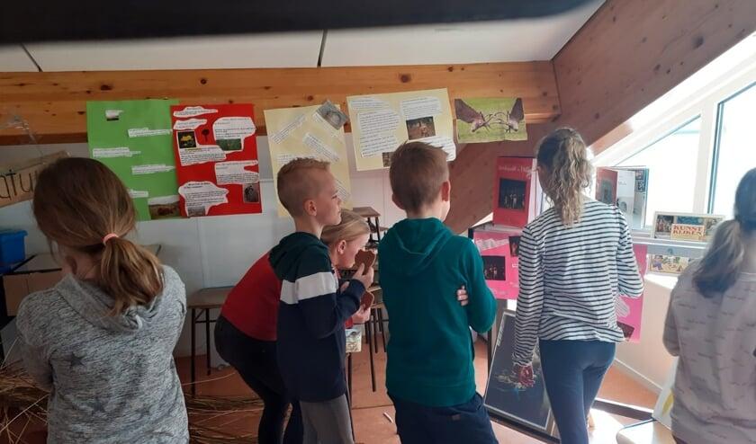 De kinderen bekijken hun eigen museum.