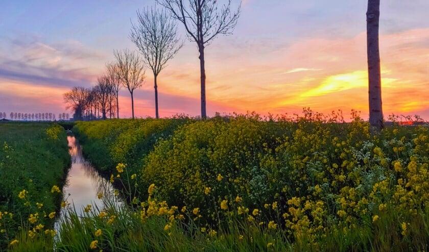 <p>Zonsondergang in Wijk en Aalburg.</p>