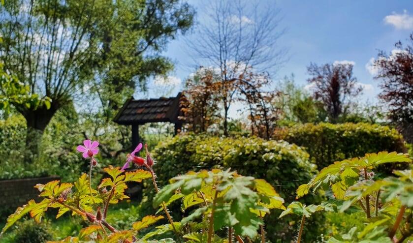 <p>De tuin van het Duyls Bos.</p>