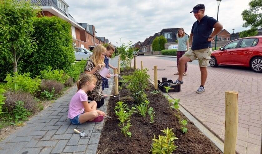 <p>Ninthe, Jasmijn en Sam geven de nieuwe plantjes water terwijl buurvrouw Dani&euml;lle en Chris Coppens toekijken. Foto: Paul van den Dungen</p>