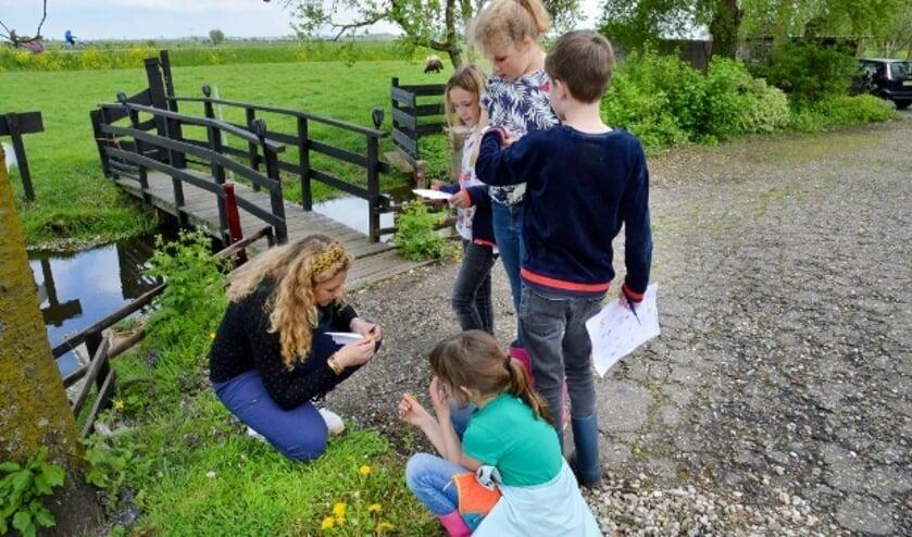 <p>Janieke van den Heuvel van BliksemBrains geeft aan de kinderen uitleg over een paardenbloem.&nbsp; &nbsp;Foto: Paul van den Dungen</p>