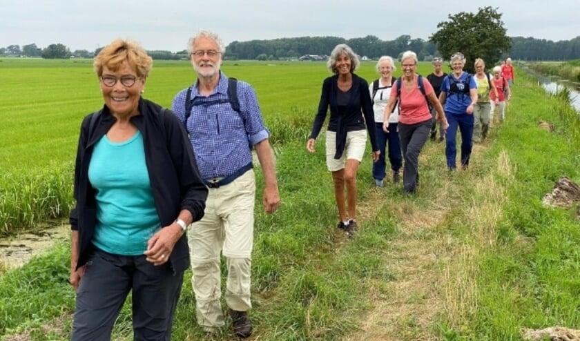 <p>Naast lanen en kades trotseerden de ruim zestig wandelaars ook jaag- en weidepaden tijdens de tweede Knooppunt Wandelvierdaagse. &nbsp;</p>