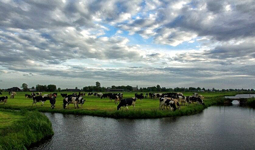 • Deze foto werd gemaakt tijdens een eerdere fotowedstrijd in het kader van Denkend aan Holland.