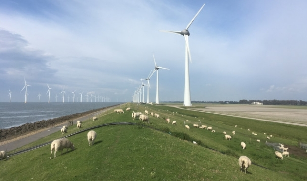 Het windpark bij Urk