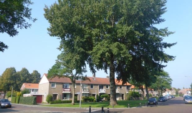De Grauwe Abeel op de hoek van de Ankerstraat en de Bakboord.