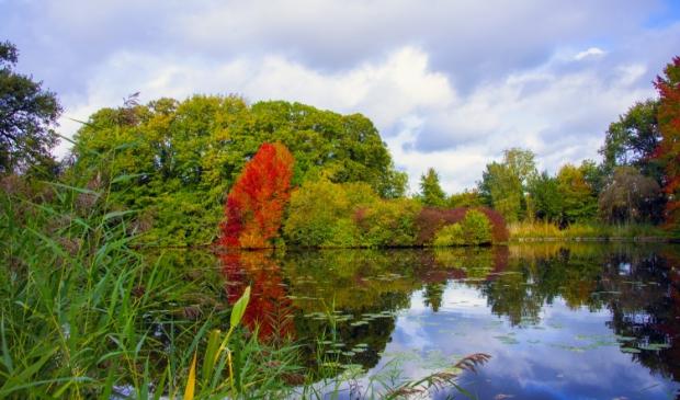 <p>Het engelse werk in herfstkleuren</p>