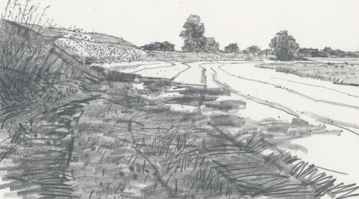 Grafiettekening op papier. Titel: Langs de IJssel (tussen De Zande en Zalk), 2020