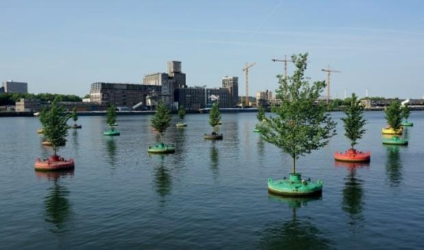 Het Dobberend Bos in Rotterdam