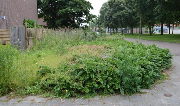 Openbaar groen aan de Baskenstraat in Dronten.