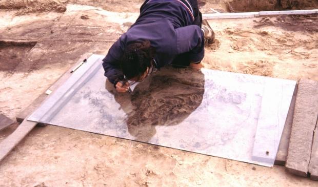 <p>Overzicht van het opgravingsterrein P14.&nbsp;</p><p><br></p>