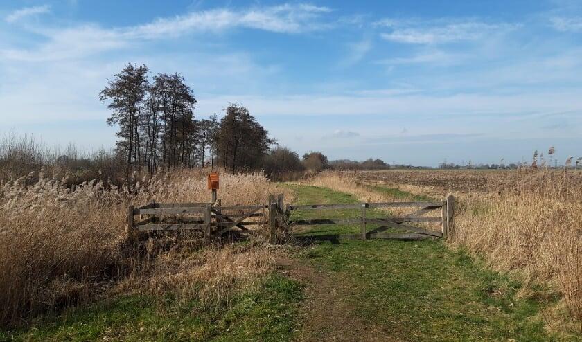 Het tuinpad van mijn vader (9): Wandelen op de grens met Zwolle