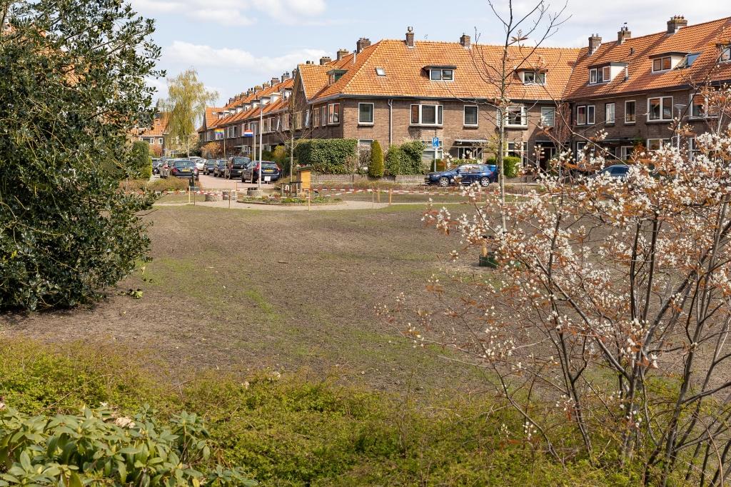 Plantsoen PC Hooftstraat. <p>Foto: Pedro Sluiter</p>