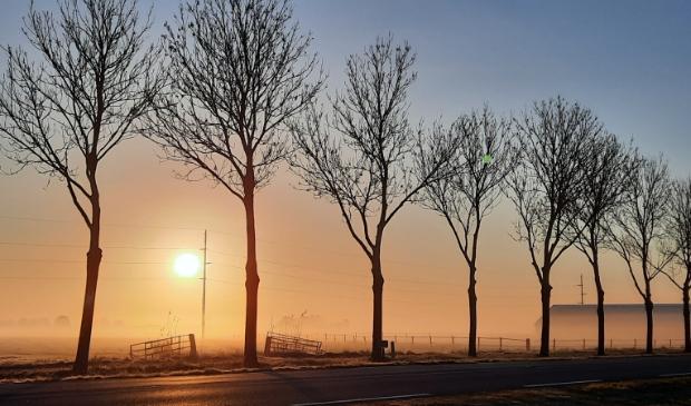 Mistige ochtend in april