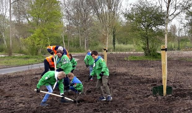 <p>Welpen planten struiken in het nieuwe deel van het Groene Hart in het Kamper Stadspark</p>