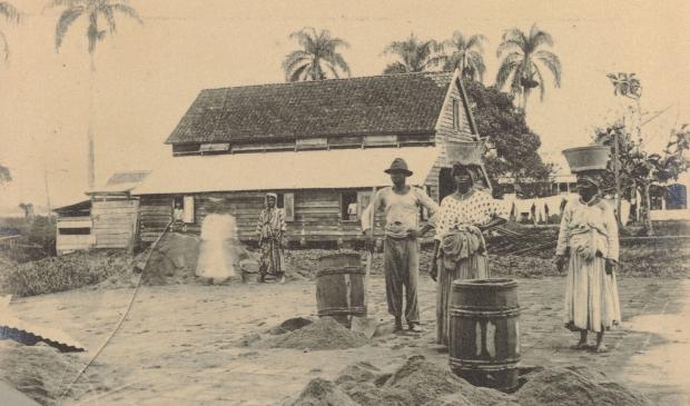 <p>Peperpot 1891</p>