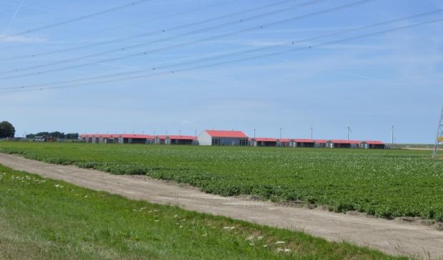 Het arbeidsmigrantendorp aan de Visvijverweg.